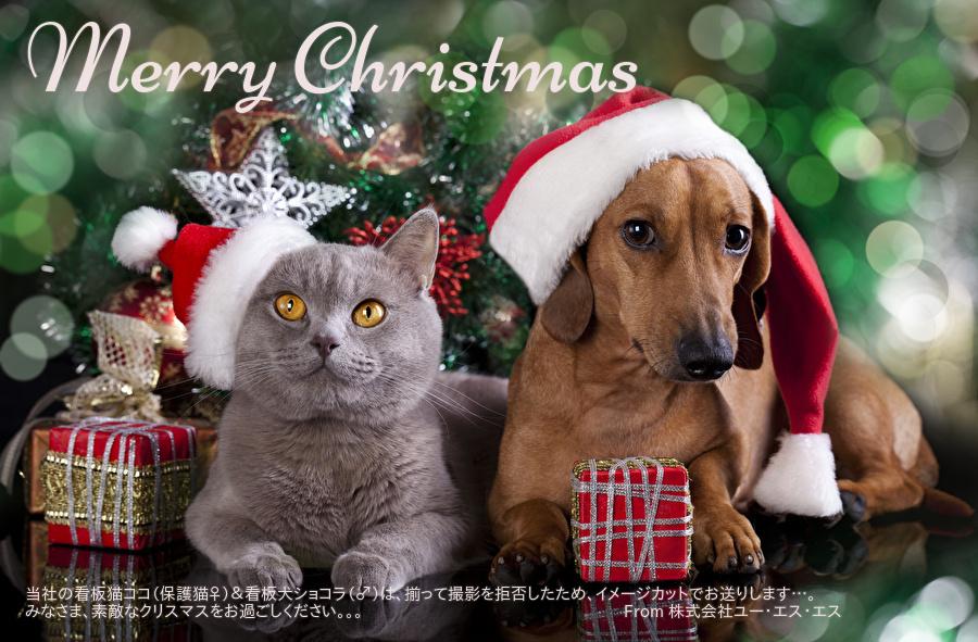 メリークリスマス_2020